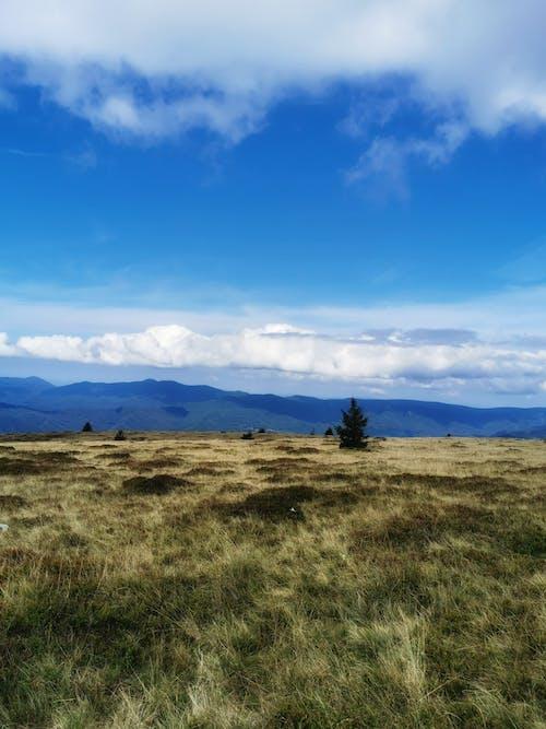 Free stock photo of blue sky, carpathian, maramures