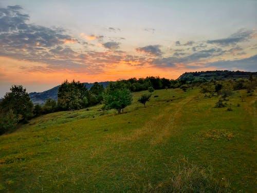 Free stock photo of green mountain, maramures, mountains