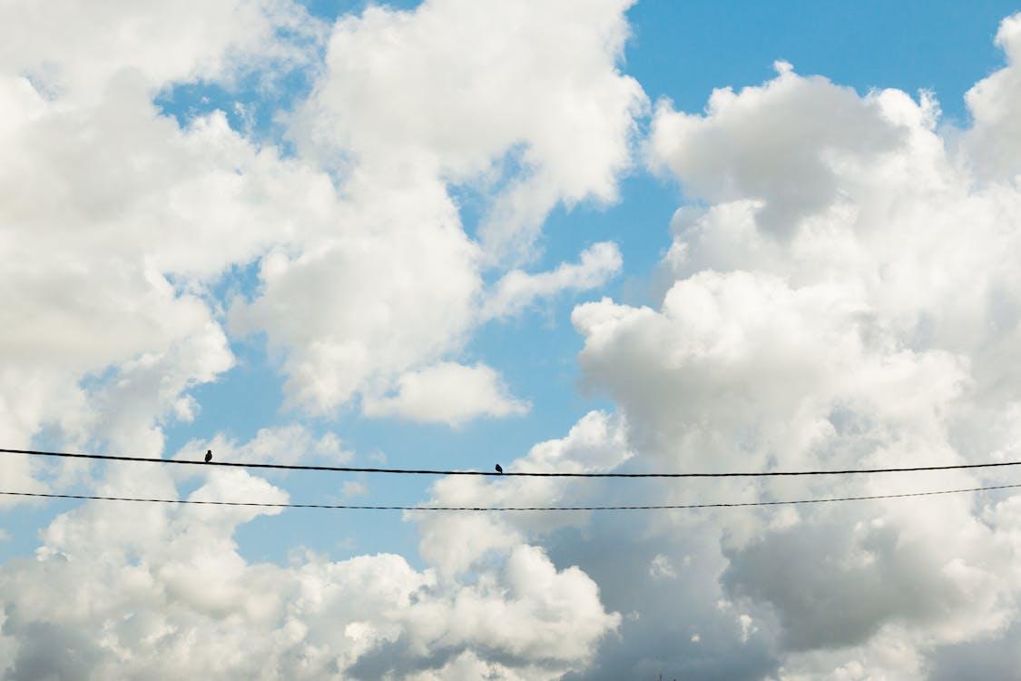 Free stock photo of cloud, nature wallpaper