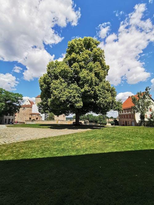 Free stock photo of cadolzburg, cadolzburg castle, castle