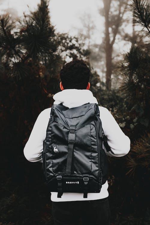 Turista Masculino Sin Rostro Con Elegante Mochila En Bosque Neblinoso