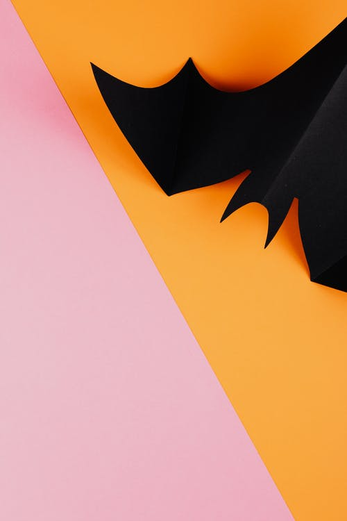 Black Paper Bat on Orange and Pink Background