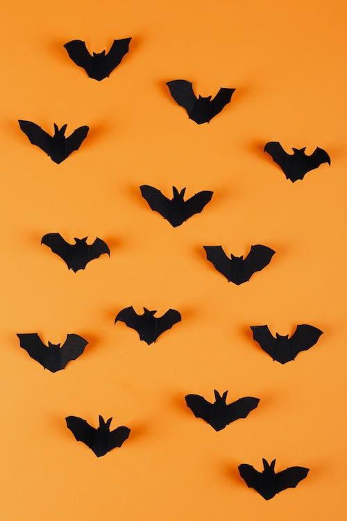 Black Paper Bats on Orange Background