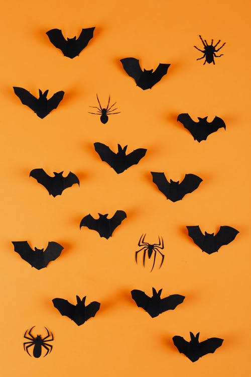 Paper Bats and Spiders on Orange Background