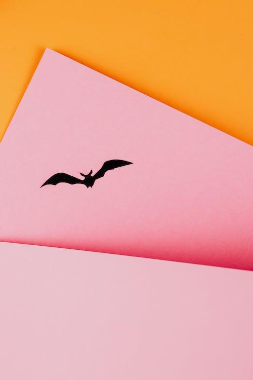 Black Paper Bat on Orange and Pink Background