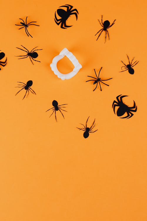 Spiders and Vampire Fangs on Orange Background