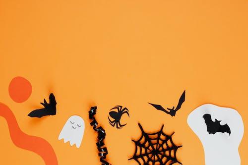 イラスト, オレンジ色の背景, クモ, コウモリの無料の写真素材