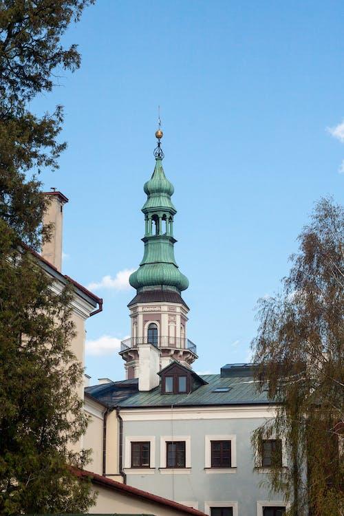 ratusz, 市政厅, 扎莫希奇, 波蘭 的 免费素材照片