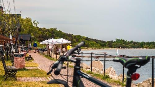 kuznica, 條, 波兰海岸, 海灣 的 免费素材照片
