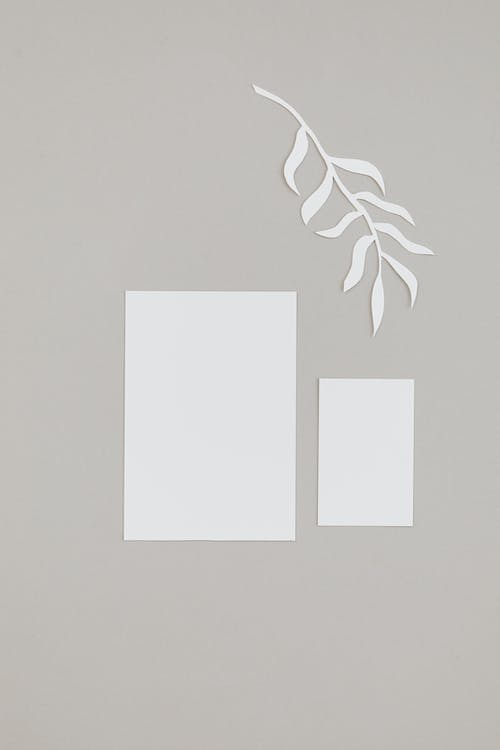 Paper And Leaf Sketch On Gray Background