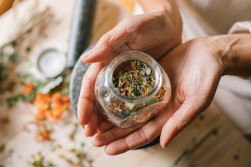 Gratis lagerfoto af blad, cannabis, flora