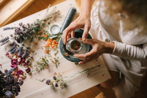 Gratis lagerfoto af blad, blomst, bryllup