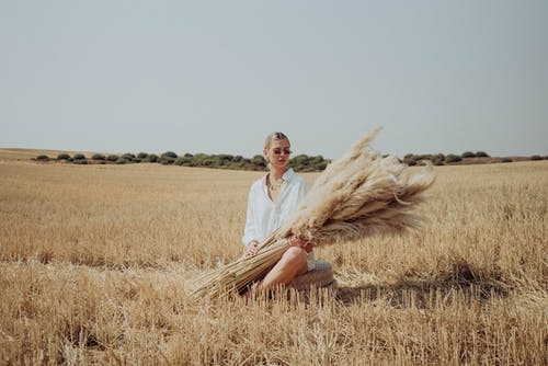 Full body of female in sunglasses wearing white shirt sitting in rural field with ears of wheat in hands in nature