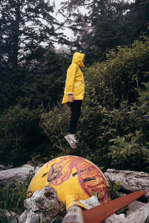 açık hava, ağaç, anonim, arazi içeren Ücretsiz stok fotoğraf