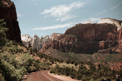 假期, 冒險, 半沙漠, 和平的 的 免費圖庫相片