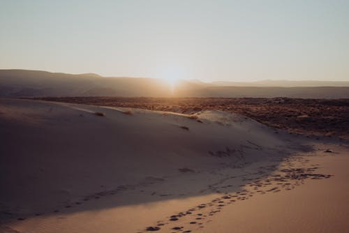 Lonely desert with sand dunes in sunset