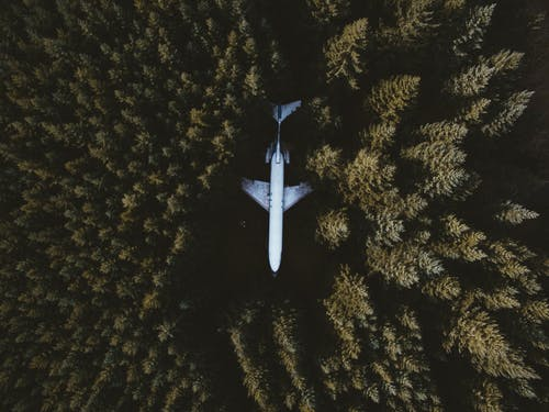 White Airplane Flying over Green Trees