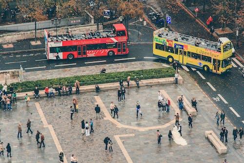 Foto d'estoc gratuïta de acció, atracció turística, autobusos, busos