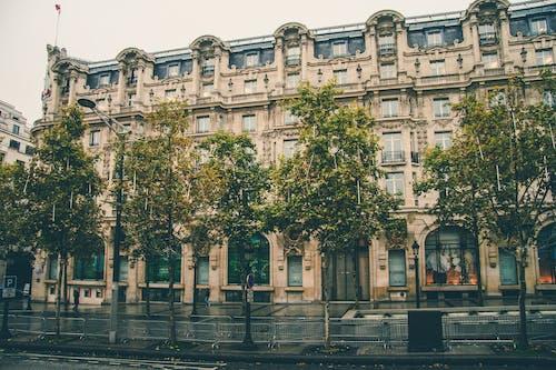 Ilmainen kuvapankkikuva tunnisteilla arkkitehtuuri, ikkunat, julkisivu, katu