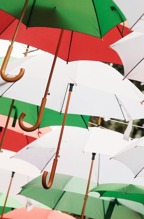 Umbrellas Used as Shades