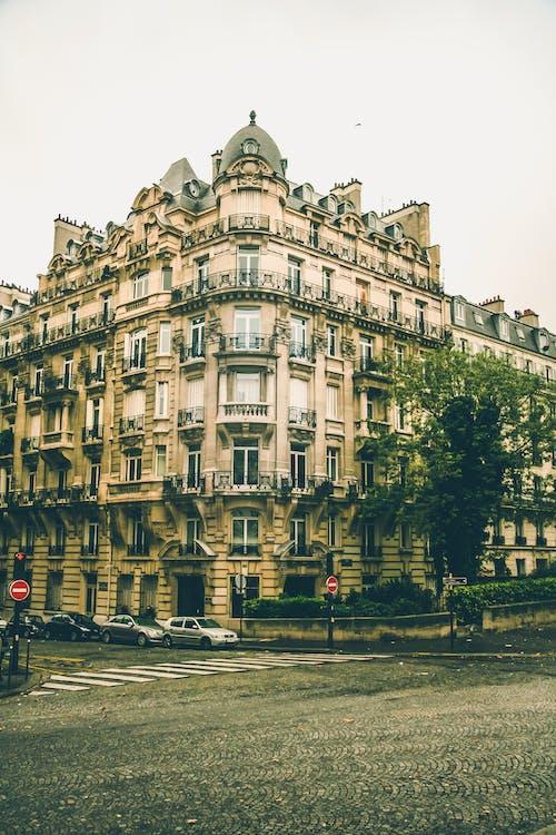 거리, 건축, 경치, 나무의 무료 스톡 사진