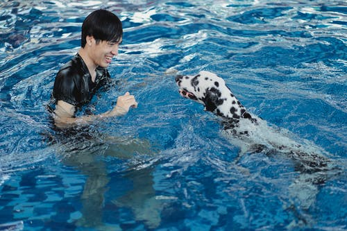 Woman in Black and White Dalmatian Swimming on Blue Water