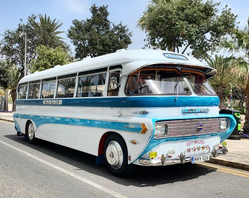 Blue and white retro public bus parked on asphalt road near tropical trees on sunny day