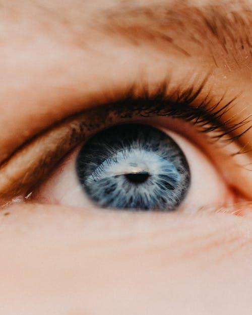Ingyenes stockfotó extrém közeli lövés, írisz, kék szem témában