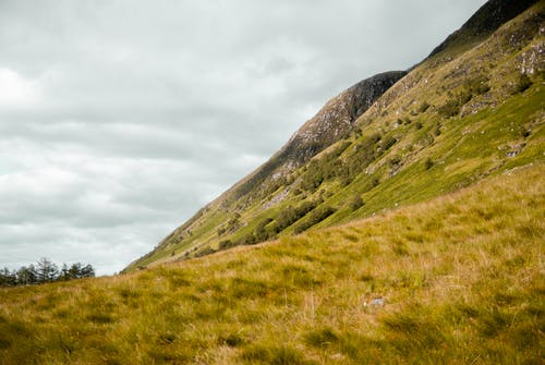 Free stock photo of ben nevis, green, hike, hiking