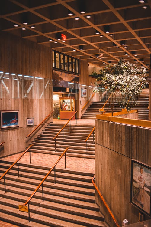 Modern building interior with stairs and flowers
