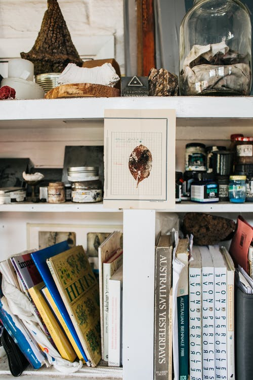 Shelves with books and decorations