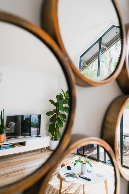 Interior of modern apartment with round shaped wooden mirrors reflecting green potted plants and contemporary TV