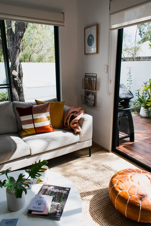 Modern comfortable living room with soft sofa and pillows near table with green potted plant in daytime