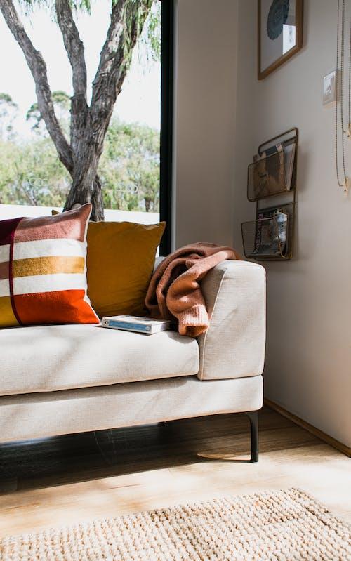 Kostenloses Stock Foto zu atmosphäre, baum, couch