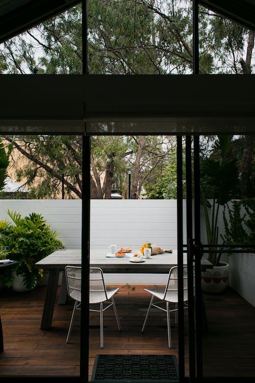 açık, ağaç, bardak içeren Ücretsiz stok fotoğraf