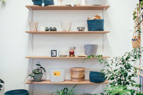 Many pots and carton boxes placed near bowls and green potted plants in apartment