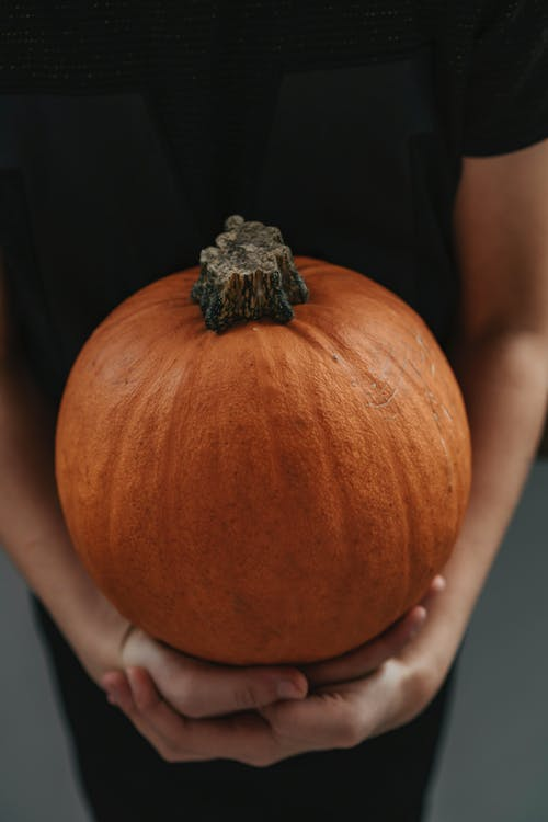 Person Holding Orange Pumpkin