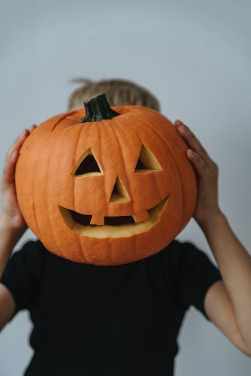 Fotos de stock gratuitas de calabaza, calabaza de halloween, calabaza tallada, chaval