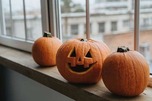 Fotos de stock gratuitas de calabaza de halloween, calabaza tallada, calabazas, feliz halloween