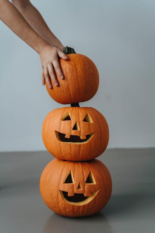 Fotos de stock gratuitas de calabaza, calabaza de halloween, calabaza tallada, feliz halloween