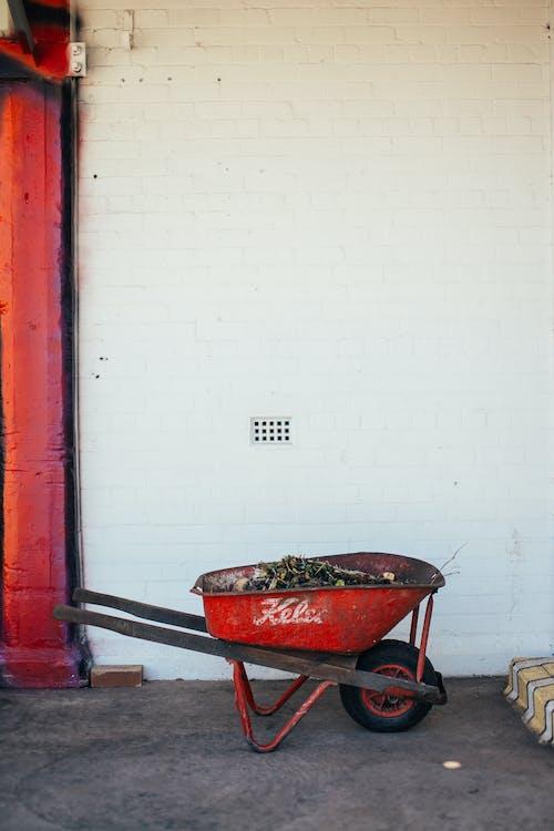 Gratis lagerfoto af ældet, arbejde, baghave