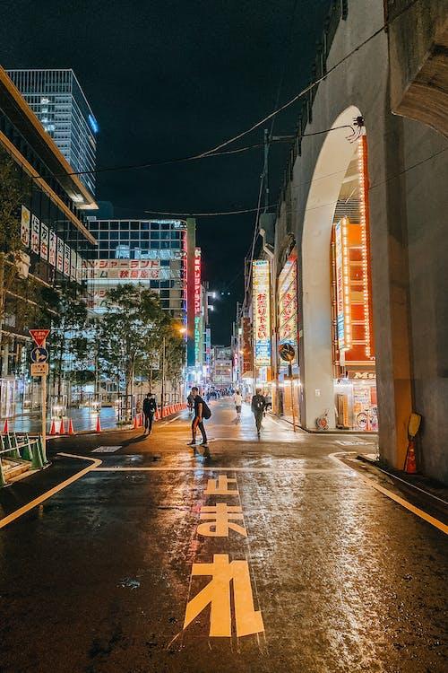 People Walking on Street at Night in Japan