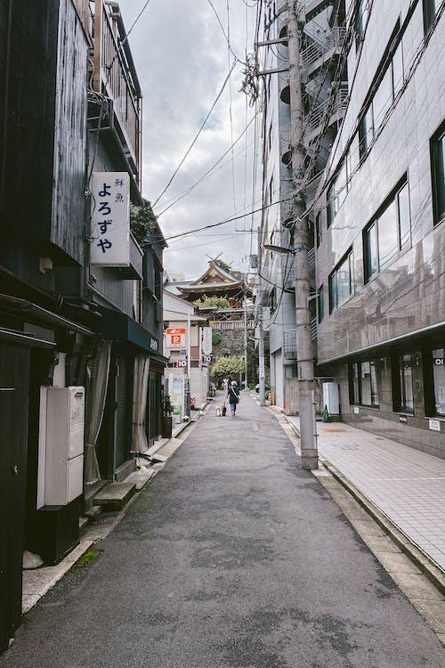Základová fotografie zdarma na téma budovy, cestování, dlažba