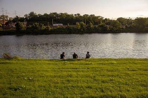 Free stock photo of art, green, lake