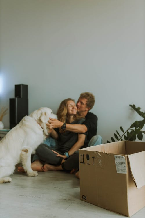 A Couple Sitting on the Floor While Playing with their Dog