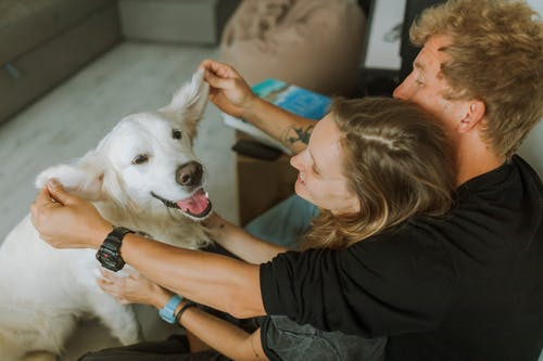 Woman in Black T-shirt Hugging White Dog