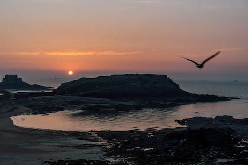 Ilmainen kuvapankkikuva tunnisteilla aamu, aamunkoitto, auringonlasku, aurinko