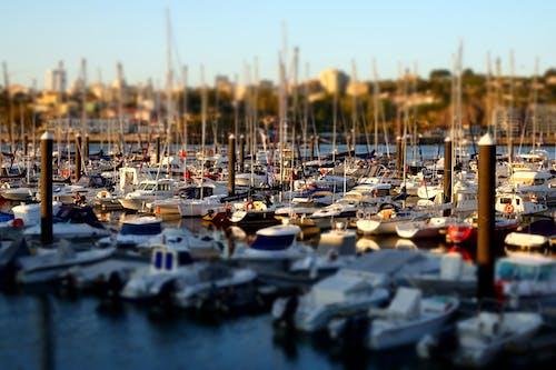 Free stock photo of afurada, anchored boats, boats