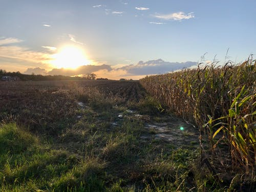 Free stock photo of countryside, farm field, landscape