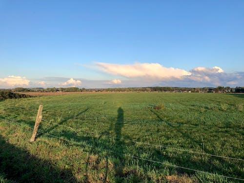 Free stock photo of beautiful landscape, countryside, farm field